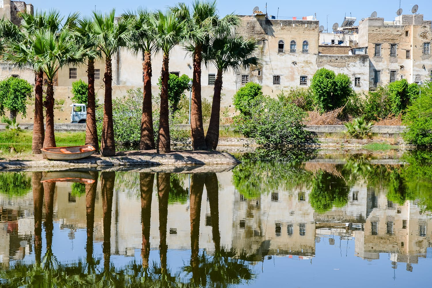 Jardin Jnan Sbil, Royal Park in Fes with its lake and towering palms, Fez, Morocco