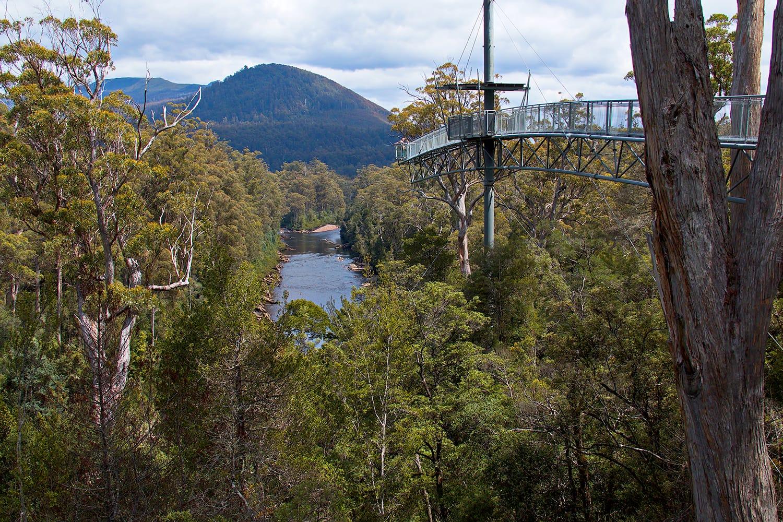 Tahune Airwalk at Geeveston on Tasmania, Australia