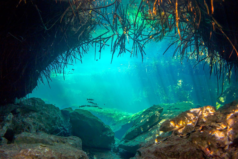 Underwater Casa Cenote Yucatan Mexico