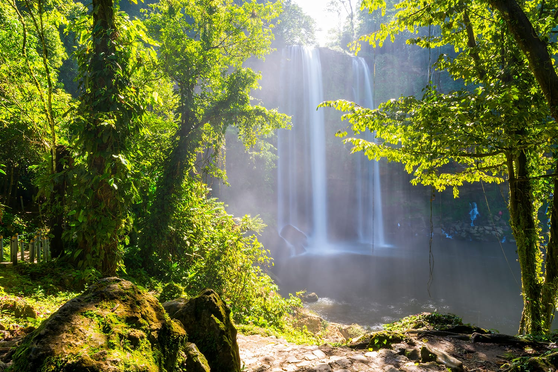 Jungle path to Misol Ha waterfall near Palenque in Chiapas, Mexico