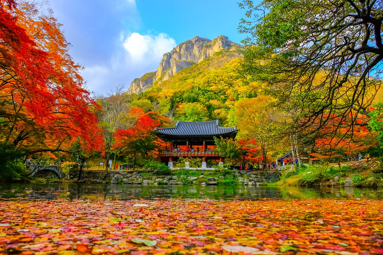 Colorful autumn at Baekyangsa temple in Naejangsan national park, South Korea.