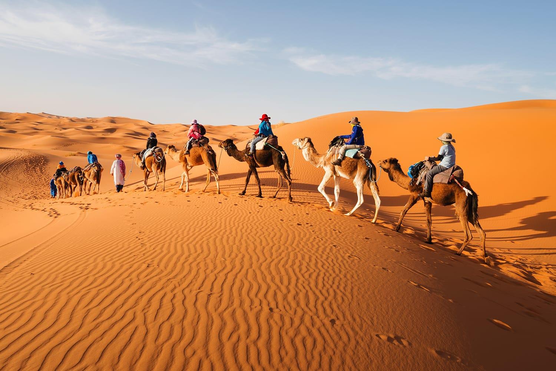 Caravan going through the sand dunes in the Sahara Desert, Morocco