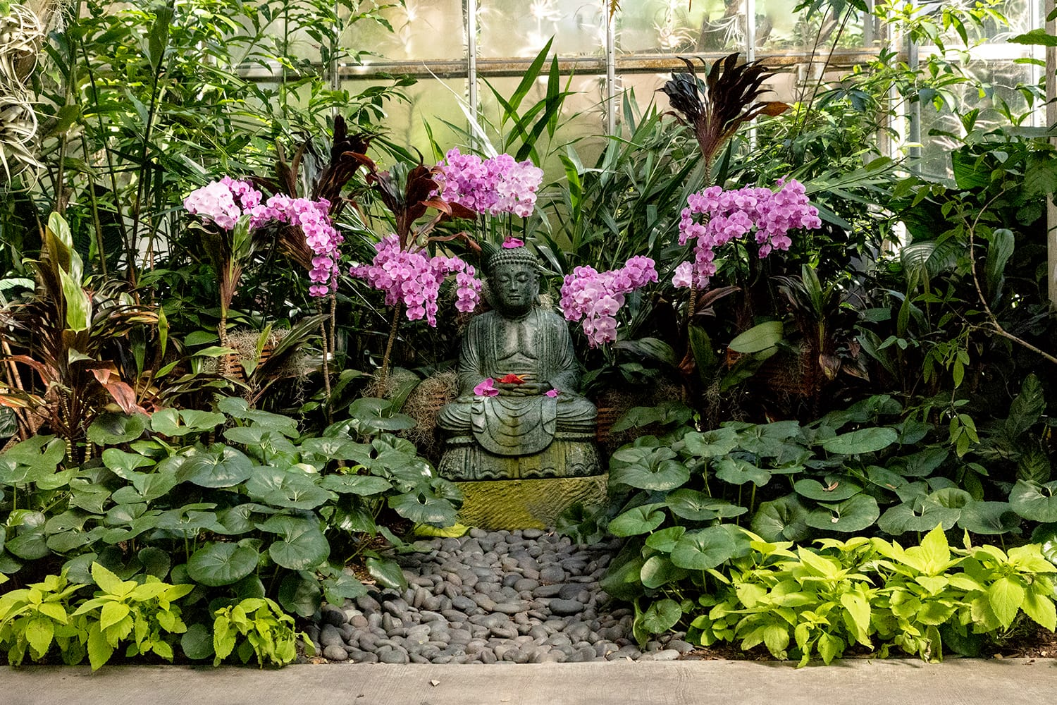 Statue of Buddha with purple orchids in the Marie Selby Botanical Garden in Sarasota, Florida, USA