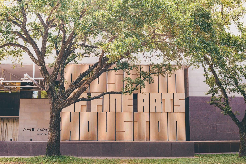 Museum of Fine Arts, Houston, Texas, USA