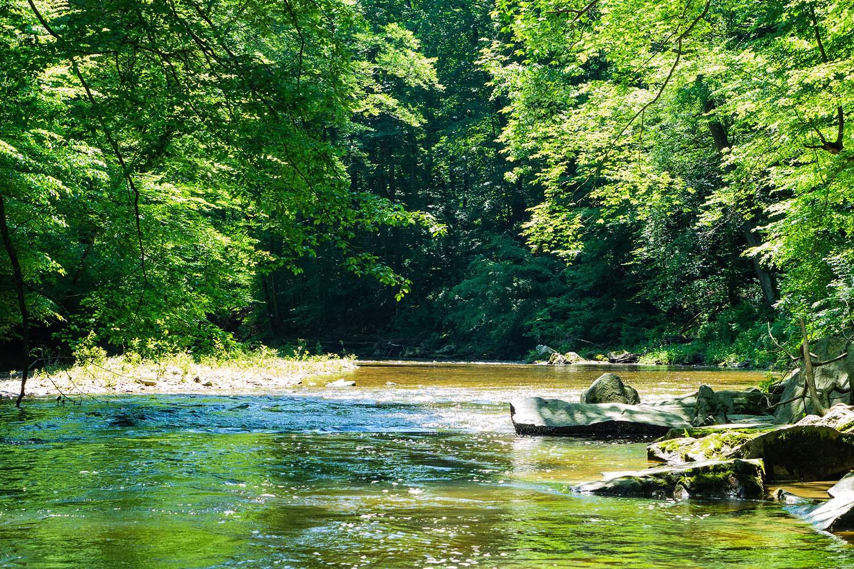 White Clay Creek in Delaware, USA